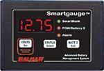 Balmer 44-SG-12/24 SMARTGAUGE BATT MONITOR 12/24V