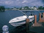 Taylor PMW1400 ULTIMATE MOORING WHIP TO 33'