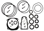 Sierra 18-2623 SEAL KIT-LOWER GC E/J#439141
